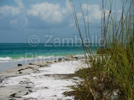 florida, key, ocean, tropical, beach, egmont key