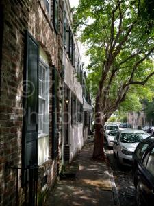 charleston, street, cobbles, cars, tree, south carolina