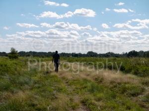 florida, walking, field, conner preserve, sky, landscape, vista, nature, wildlife, environment
