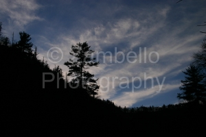 linville gorge, sunset, silhouette, tree, forest, north carolina