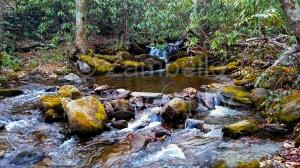 pisgah, forest, north carolina, camping, river