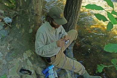 Baltimore Ecosystem Study