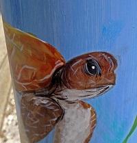 fishing, line, recycle, nature, florida, sea turtle