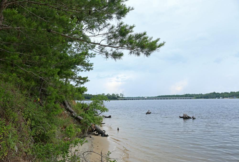 rocky bayou, nature, landscape, florida