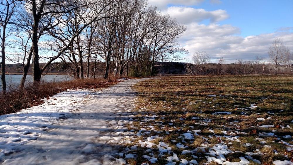 maine audubon, winter, nature
