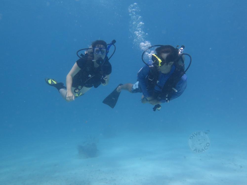 nature, landscape, diving, bahamas