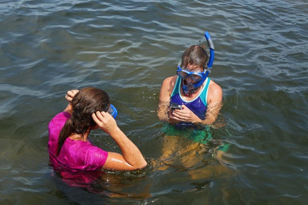 nature, snorkel, florida